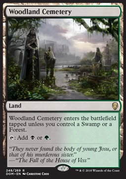 FOIL WOODLAND CEMETERY Dominaria DOM Magic MTG MINT CARD