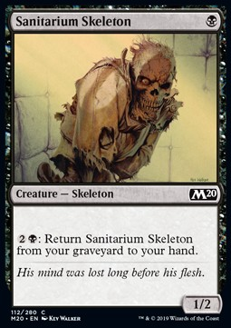 Sanitarium Skeleton
