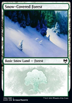 Snow-Covered Forest (V.1)
